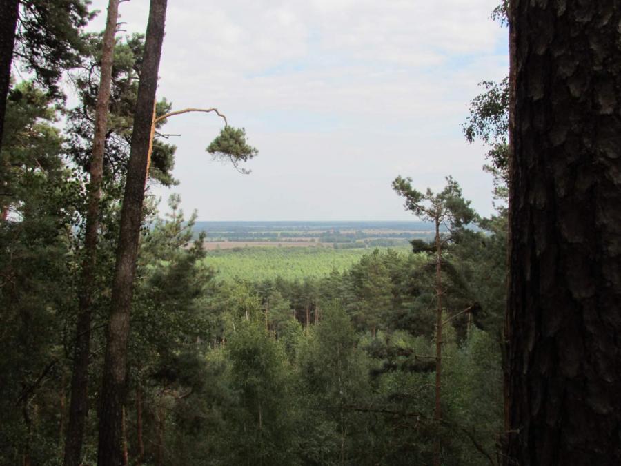 Blick vom Königsberg
