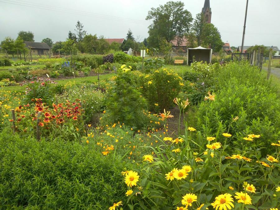 Kräutergarten in Dissen