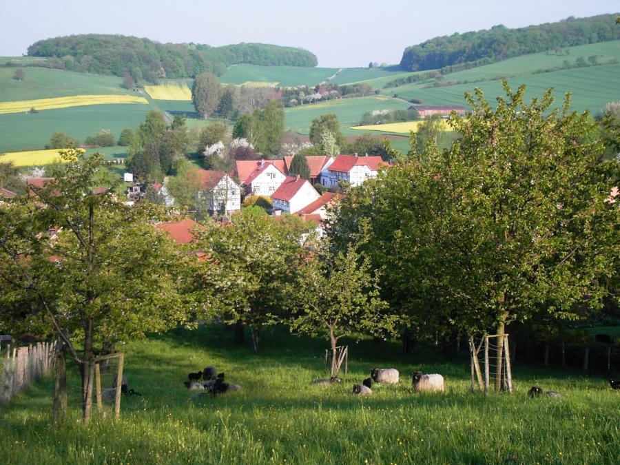Kulturlandschaft in Reiffenhausen
