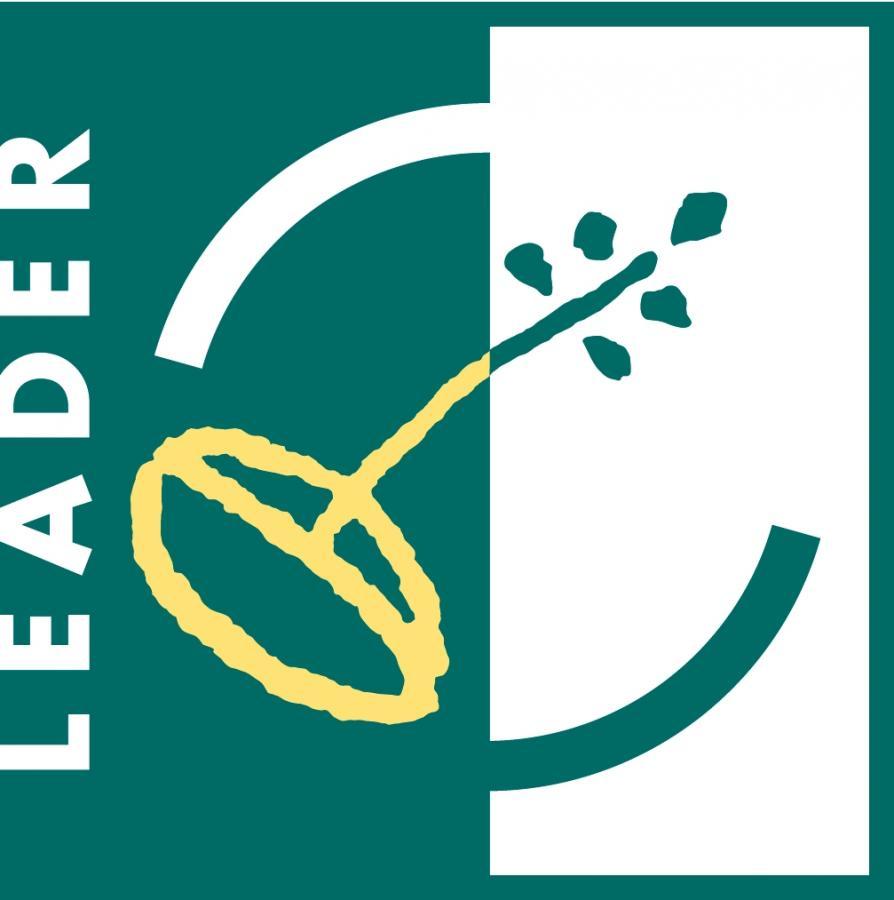 LEADER Logo gruen