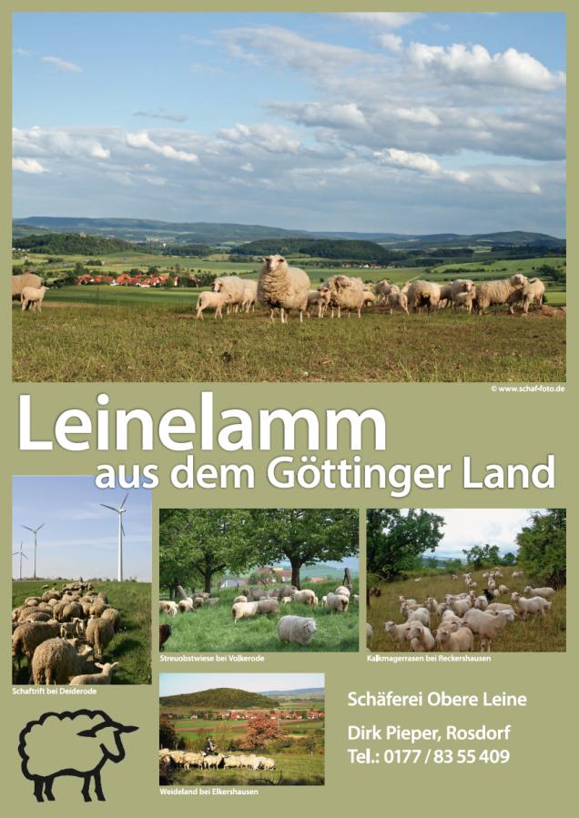 Poster Leinelammwochen