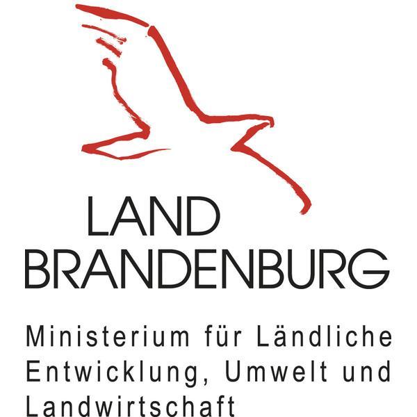 LELF Logo.jpg