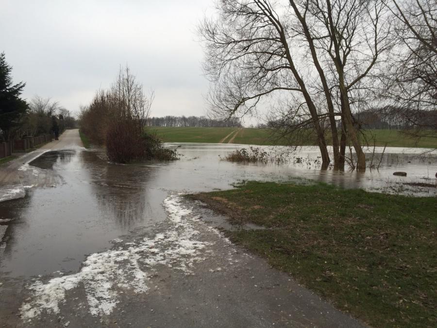 Lenzeinsatz Pappelweg