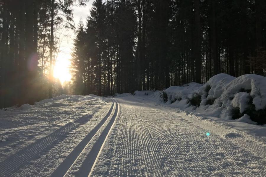 Hintersteinhüttenrunde- Langlaufgebiet Bayerisch Häusl in Bayerisch Eisenstein