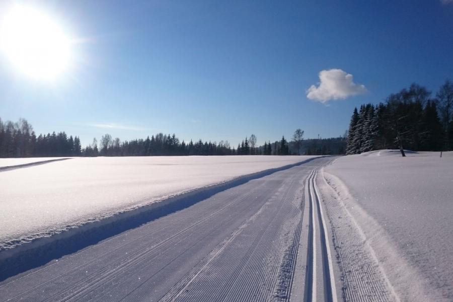 Steinhüttenrunde- Langlaufgebiet Bayerisch Häusl in Bayerisch Eisenstein