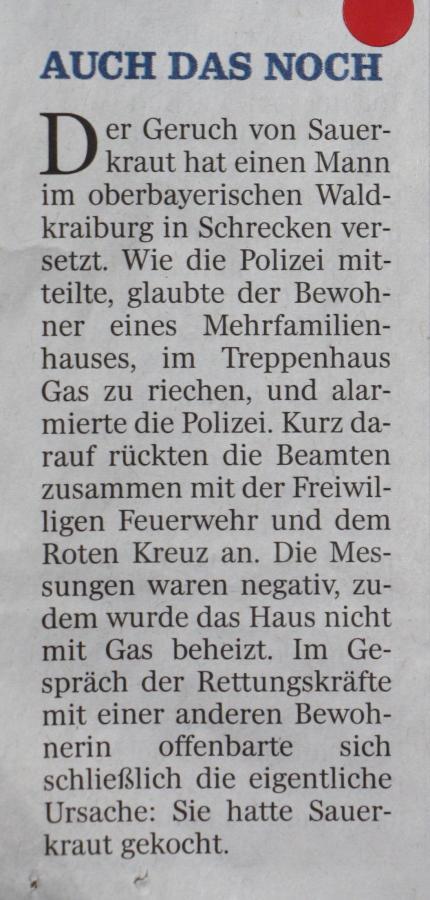 LT 2015.12.21 Das gekochte Sauerkraut