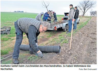 Baumpflanzaktion 2018