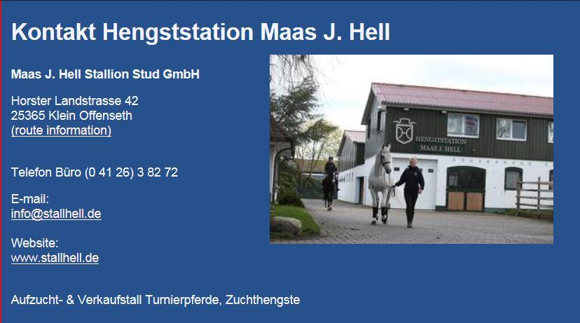 Hengststation Maas J. Hell