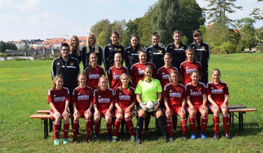 Damenmannschaft 2018/2019