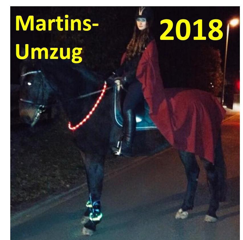Martinsumzug 2018