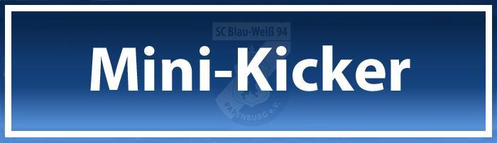 Mini-Kicker