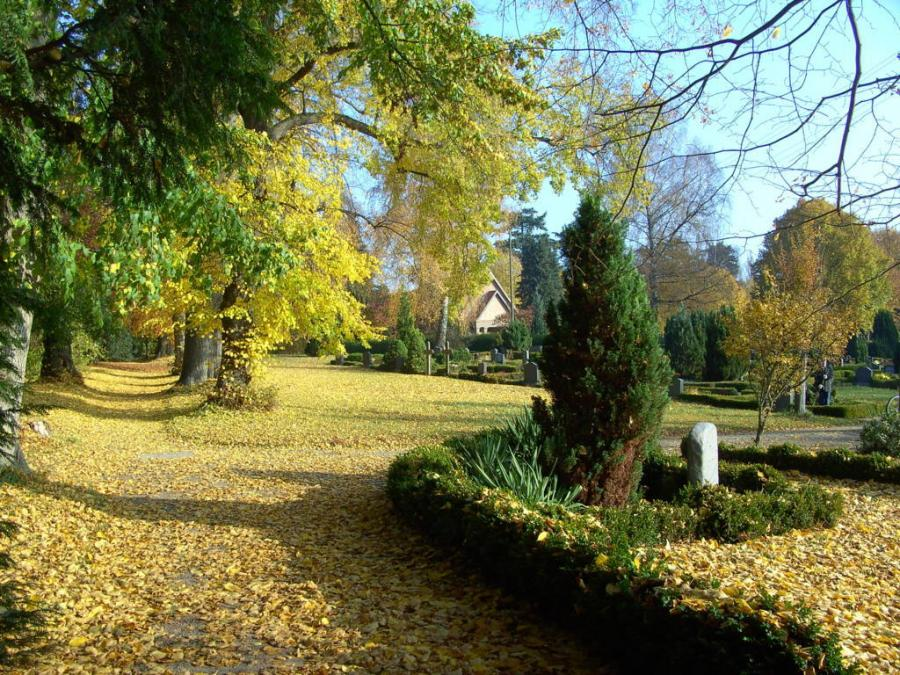 Friedhof Neukalen