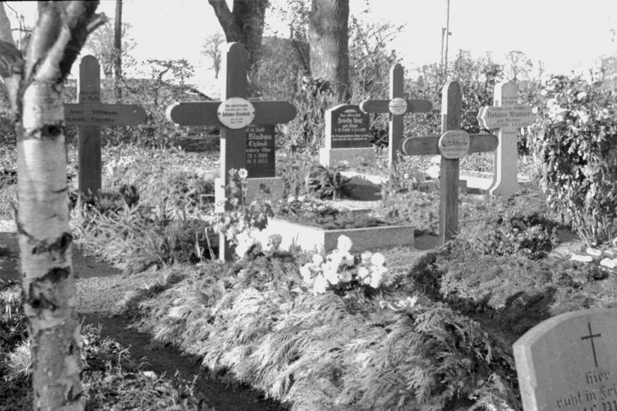 Friedhof Neukalen, um 1955 (5)