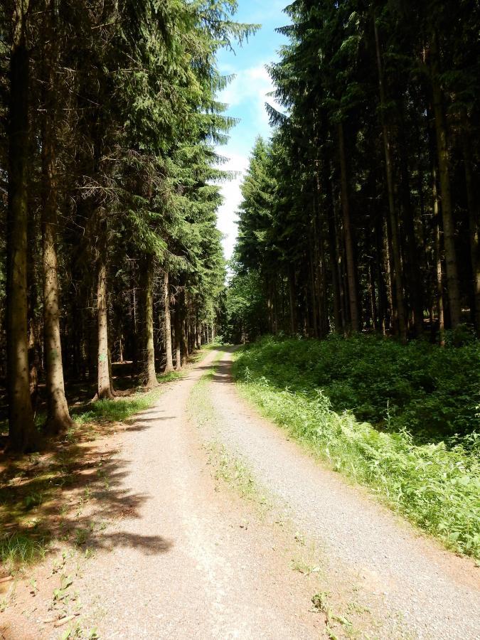 Neue Wege gehen (by Barbara Ludwig)