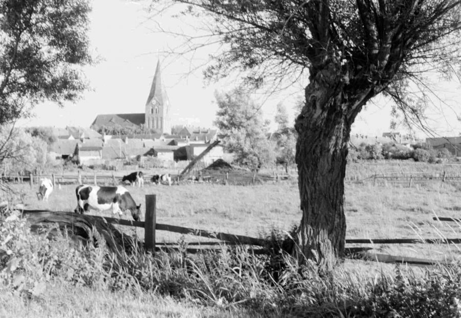 "Am ""Kuhdamm"", um 1960"