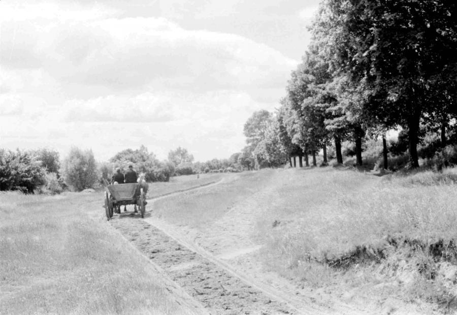 Weg beim alten Sportplatz, um 1960