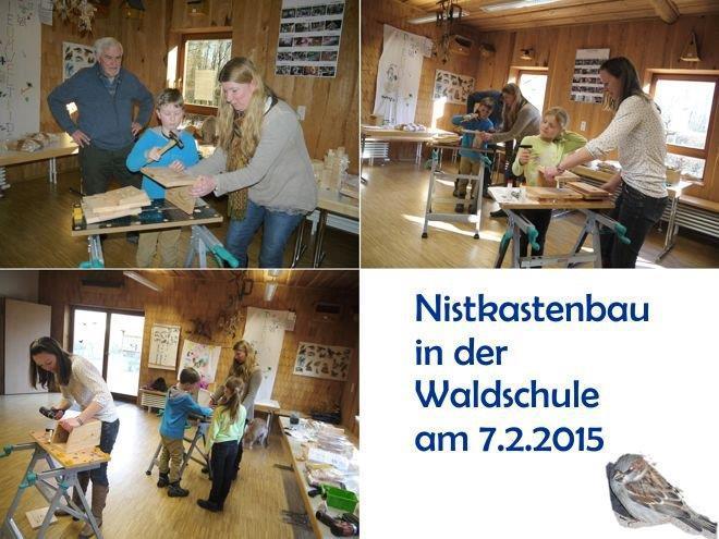 Bau von Nistkästen 2015