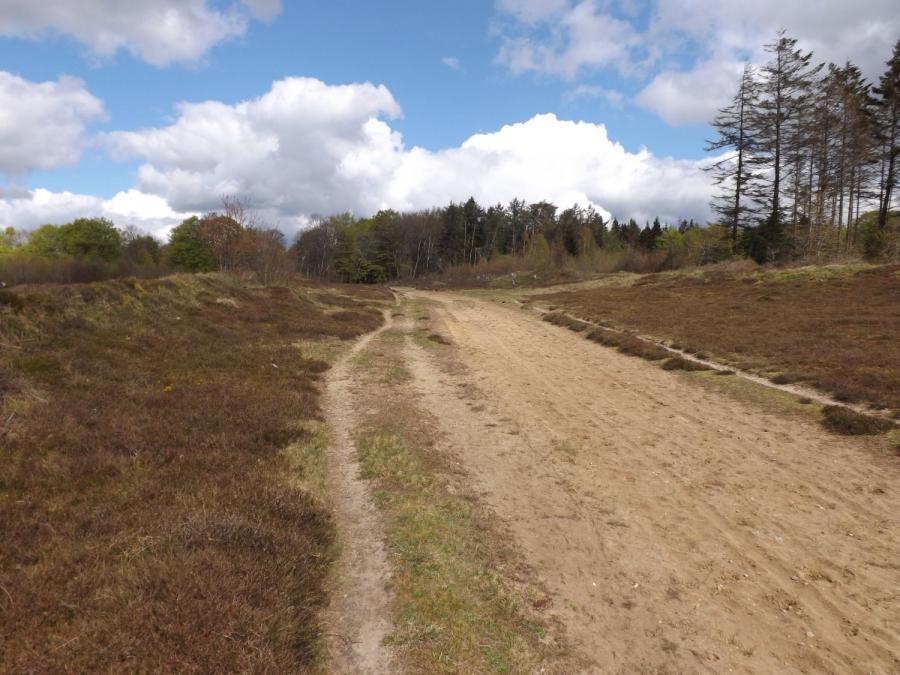 Ochsenweg 1