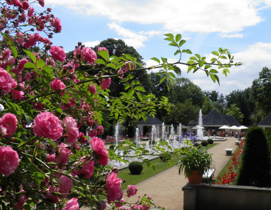 Rosengarten Forst @ A. Schild