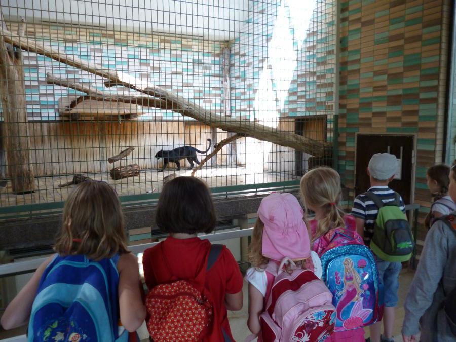 Tierpark Friedrichsfelde