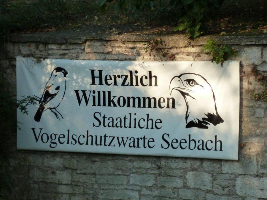 VSW Seebach