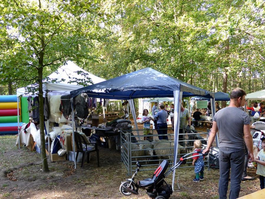 Herbstfest 2019 im Krugpark