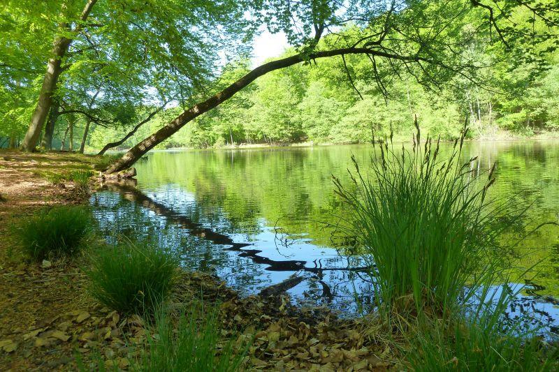 Naturpark Barnim_Liepnitzsee_Foto: Gerigk