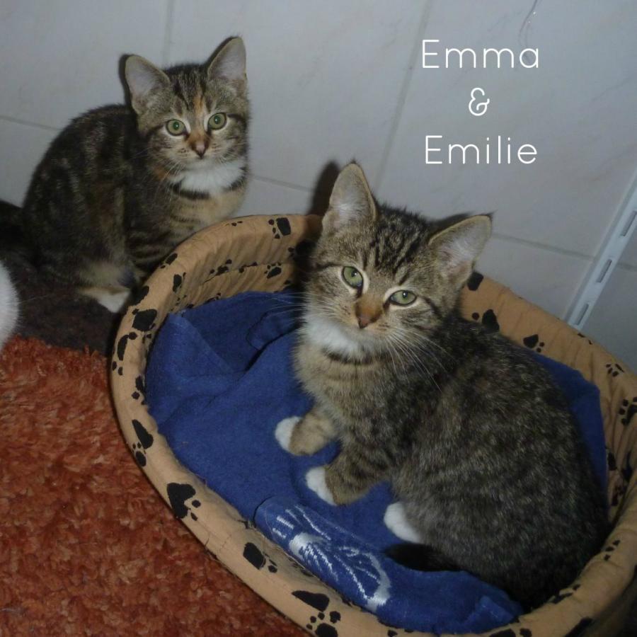 Emma & Emilie