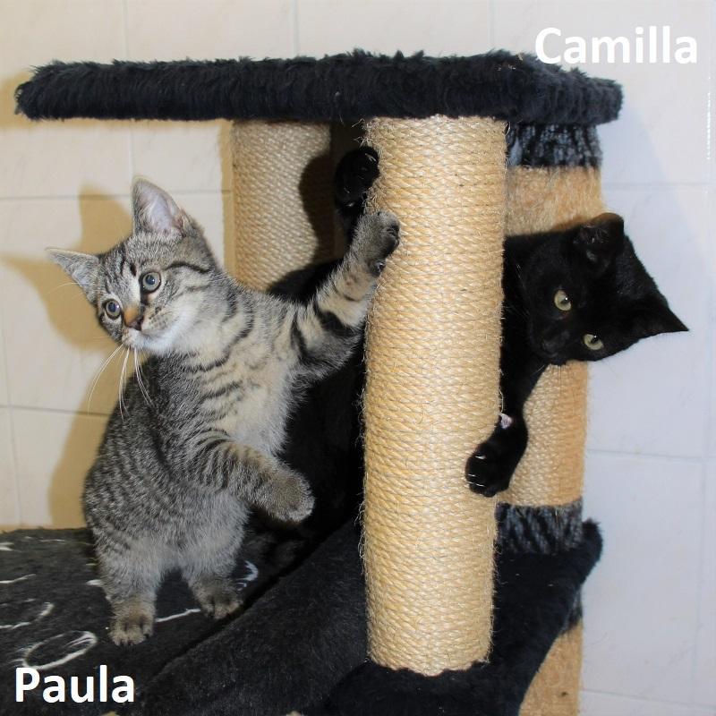 Paula & Camilla