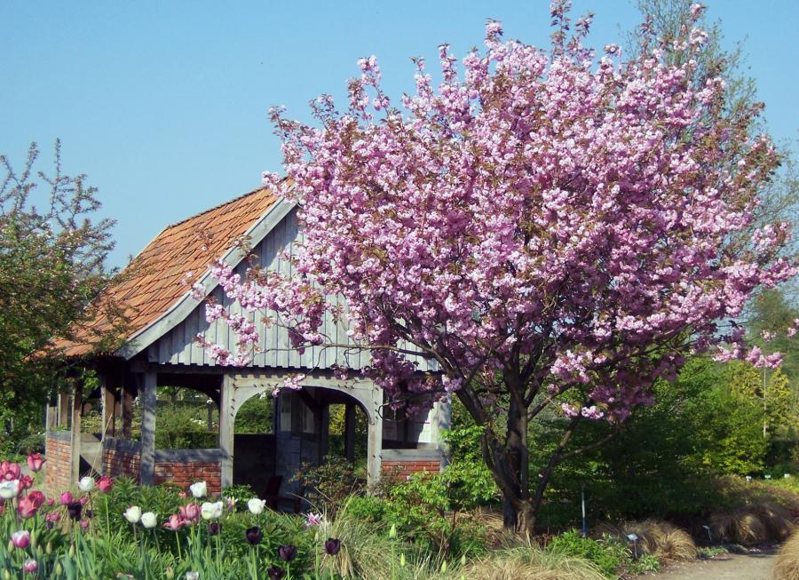 Ernst Pagels Garten