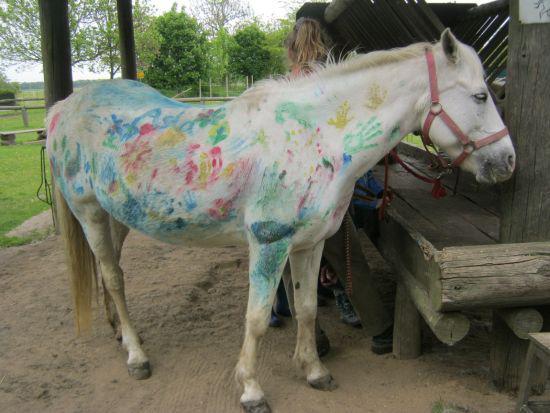 Buntes Pferd