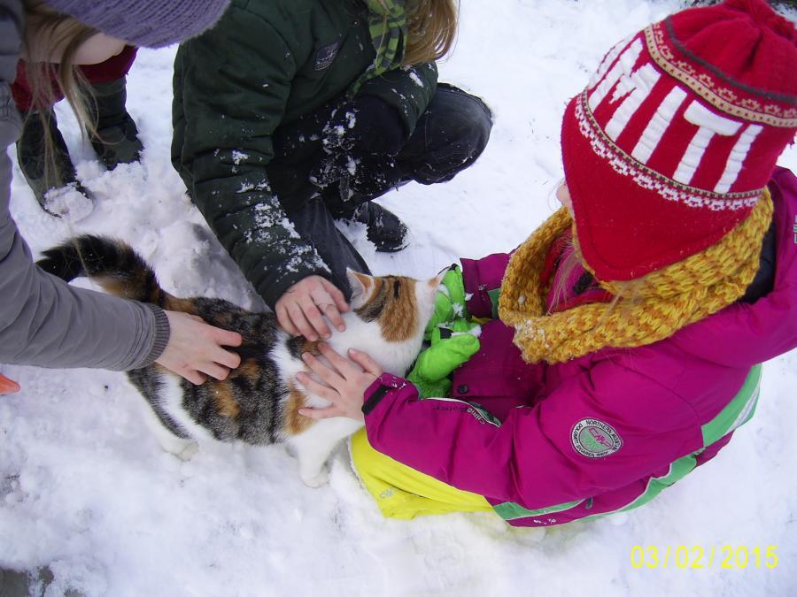 ABC, die Katze lief im Schnee...