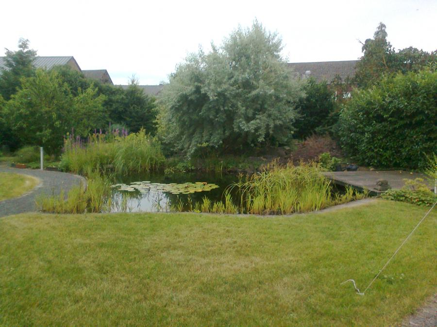 Plaidt - Hausgarten, mit Badeteich und Holzdeck