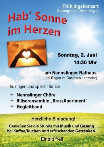 Plakat Einladung Open-Air-Konzert