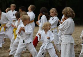 2015_Karate_Probetraing