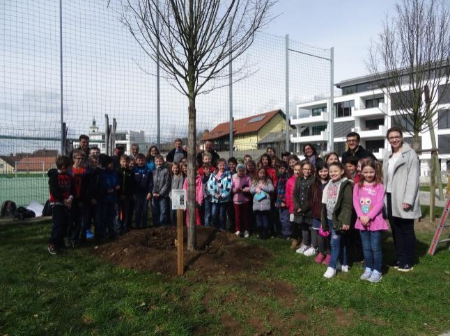 Projekt Murgtalschule