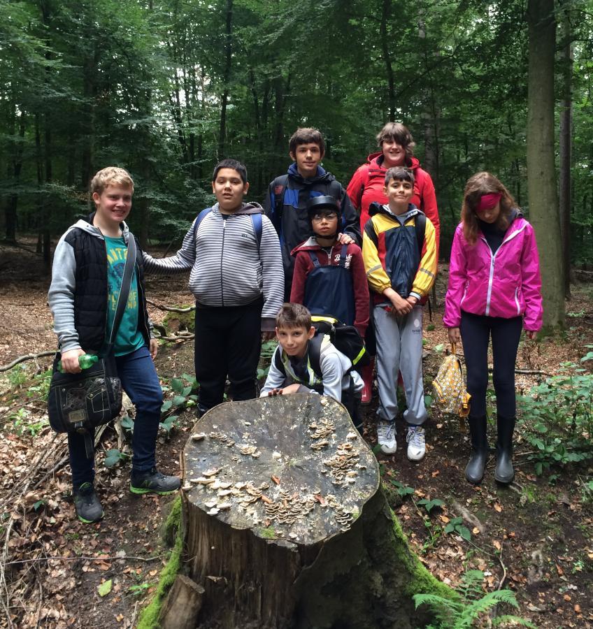 Projekt Wald mit allen Sinnen