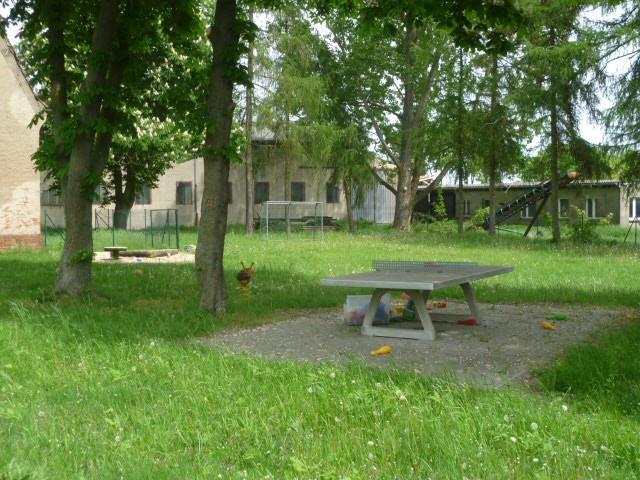 Reinsdorf 4