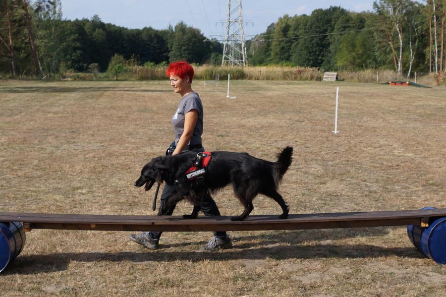 Mandy Kalz beim Arbeiten mit ihrem Rettungshund Lea