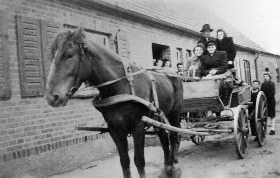 Mit Prinz, dem Pferd der Familie Rötlich in Schwarzenhof, mußten so manche Fahrten nach Neukalen gemacht werden