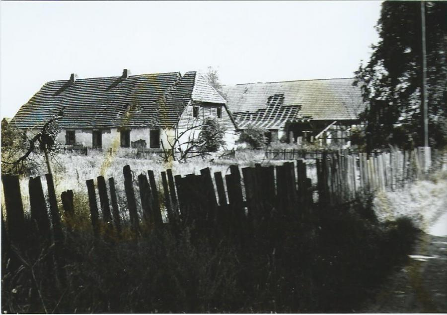 Ruhn 1982