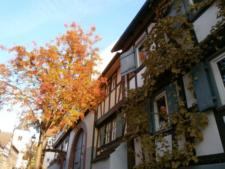 Bild zeigt historische Fachwerkhäuser in Maintal-Hochstadt; sie prägen das Stadtbild