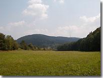Sachsenbrunn 1