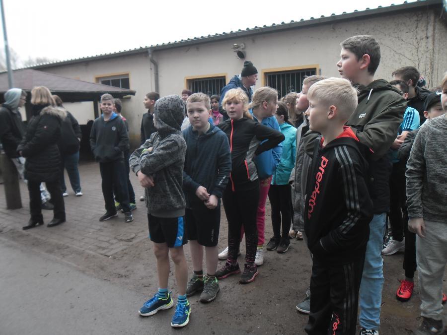 Schulcrosslauf 2