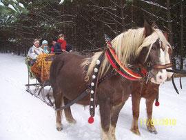 Antiker Pferdeschlitten