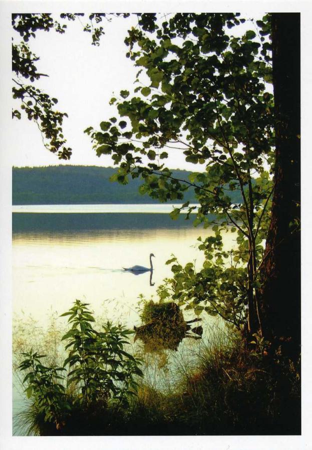 Schmachter See Ostseebad Binz