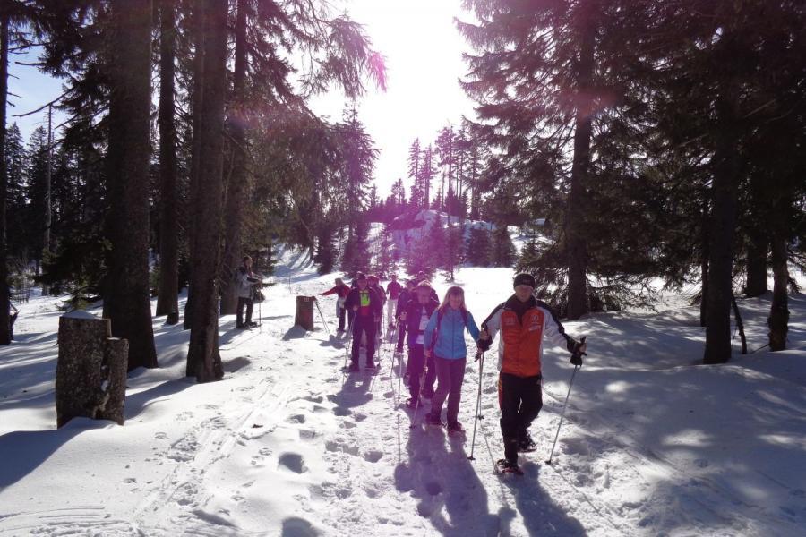 Geführte Schneeschuhtouren rund um Bayerisch Eisenstein