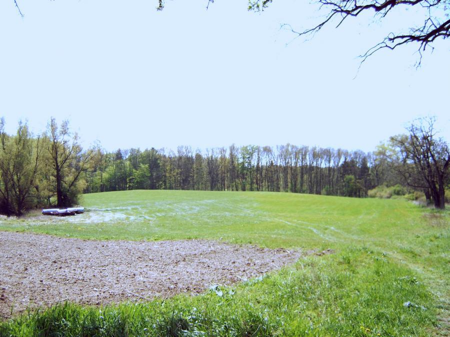 Alte Hofstelle bei der Buschkoppel