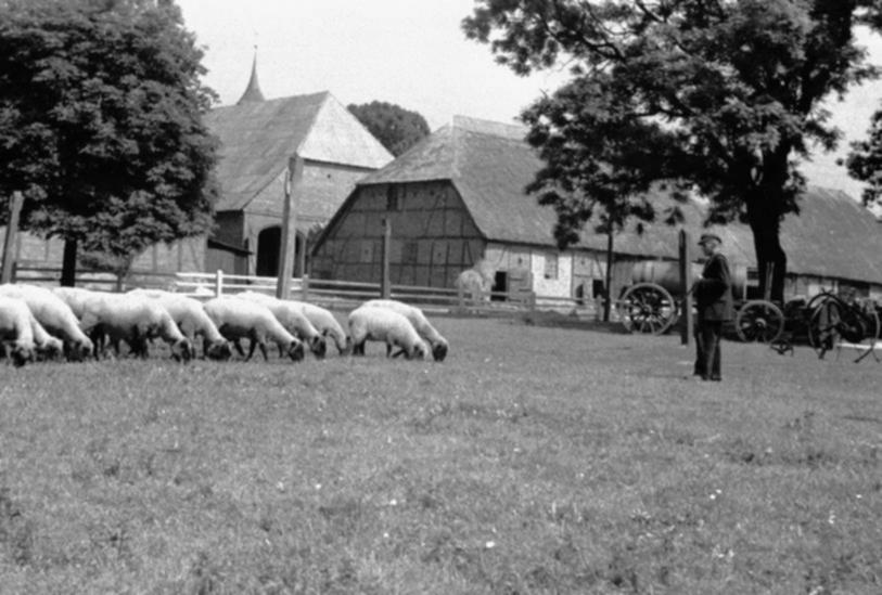 Schäfer Gauck und die Schafsscheune