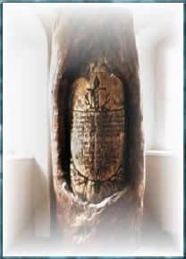 Schwertkiefer mit Inschrift